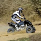 Wildcat 520 Sport 4
